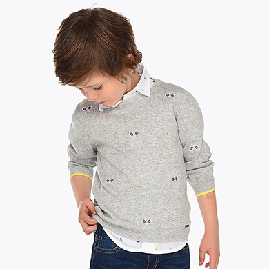 f97545fb283 Embroidered jumper for boy